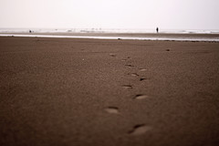 In Your Footsteps